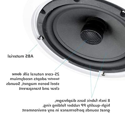 8 Inch HiFi Premium Surround Speaker Ajustable
