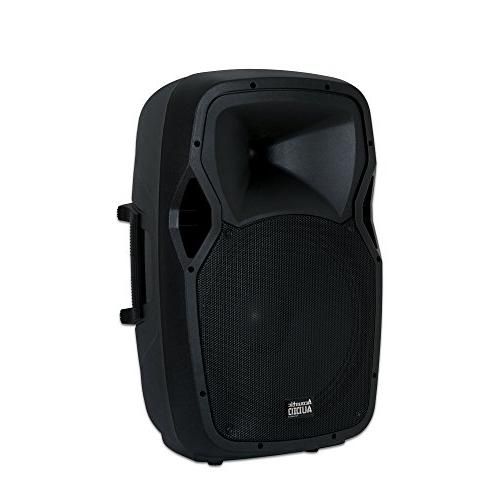 Acoustic AA15BS Powered Portable with Wireless Speaker Stand